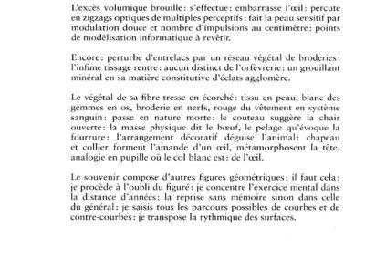 Éric Suchère, Résume antérieur (p. 26)